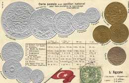 Carte Postale Avec Pavillon National Pour Faire Connaitre Le Monnayage Internationa L'EGYPTE  RV - Monnaies (représentations)