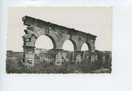 Piece D Antan - Maroc - Volubilis - Portique D Une Rue - Maroc