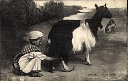 Cp Malta, Milk Seller, Junge, Ziege - Malta
