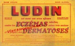 21- DIJON- RARE BUVARD LUDIN SIROP- LABORATOIRES REY- ECZEMAS GERMATOSES-PHARMACIE -IMPRIMERIE BELFORT - Produits Pharmaceutiques