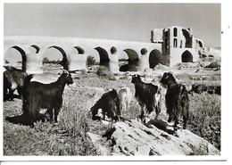 Iran Carte Postale Circulée 15.3.1964 - Iran