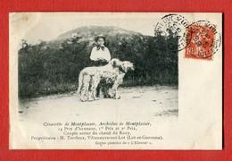 CPA 47 VILLENEUVE-SUR-LOT : Césarette ,Achiduc De Montplaisir,Prix D'honneur Couple Setter Du Chenil De Rooy, M Terrieux - Villeneuve Sur Lot