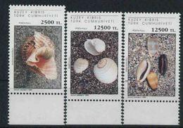 1994 Cipro Del Nord, Conchiglie, Serie Completa Nuova (**) - Nuovi