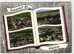 1 Cpsm Souvenir De Bougneau - Frankreich