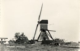 Hoogmade, Wipmolen, Poldermolen, Windmill, Real Photo - Watermolens
