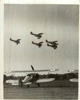BRISTOL  BULLDOG   RAF     21 * 16 CM Aviation, AIRPLAIN, AVION AIRCRAFT WW2 - Aviación
