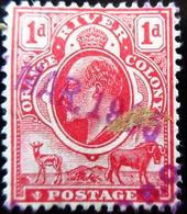 1903 Orange Mi:ZA-OR 40, Sn:ZA-OR 62, Yt:ZA-OR 39, Sg:ZA-OR 140 / 1 D - Penny Sud-africain Oblitéré - Afrique Du Sud (...-1961)