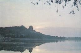 CARTOLINA - POSTCARD - CINA - A MORNING SCENE IN THE SUMMER PALACE PEKING - Cina