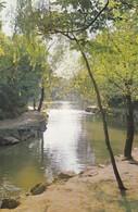 CARTOLINA - POSTCARD - CINA - THE BACK LAKE  THE SUMMER PALACE PEKING - Cina