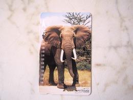 1  CARD AUSTRALIA    ELEPHANT    TOP MINT - Australie