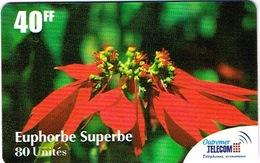 France Outremer Telecom Telephone Prepayee Antilles Martinique Fleur Flower Euphorbe Superbe Non Gratte Mint + Folder - France
