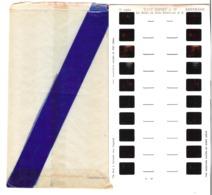 Lestrade   Vues Kodachrome   Walt Disney N°19   La Belle Au Bois Dormant N°2 - Stereoscopes - Side-by-side Viewers