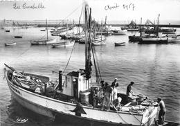 ¤¤  -  LA TURBALLE  -   Arrivée Au Port D'un Sardinier   -  ¤¤ - La Turballe