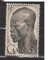 CAMEROUN           N°  YVERT  :  294   NEUF AVEC  CHARNIERES      ( Ch 1/27  ) - Cameroun (1915-1959)