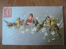 CPA 2 - Carte Postale - Oiseaux - Phantasie