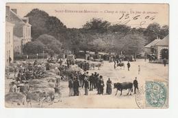 SAINT ETIENNE DE MONTLUC - CHAMP DE FOIRE - UN JOUR DE CONCOURS - 44 - Saint Etienne De Montluc