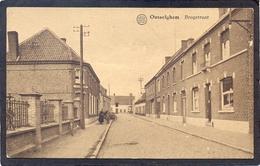 OUSSELGHEM (Oeselgem) Brugstraat - Dentergem