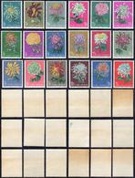 1960/61 - Chrysanthemus, Three Complete Set (M.570/575,577/582,583/588), Originale Gum Tropical, MNH... - Non Classificati