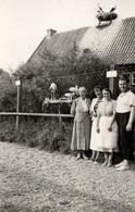 Photo Originale Au Rendez-Vous Des Cigognes - Famille Posant Devant Les Ciconia Sur Le Toit Et Au Nid Au Sol 1950/60 - Personnes Anonymes