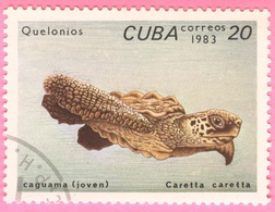 Cuba - 1983 - Fauna - Turtles - 20 C. - Cuba