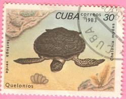 Cuba - 1983 - Fauna - Turtles -30 C. - Cuba