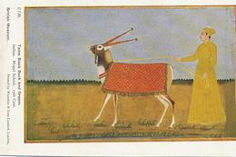 Tame Black Buck And Groom Indian. Mogul School 17 Th Century British Museum - India