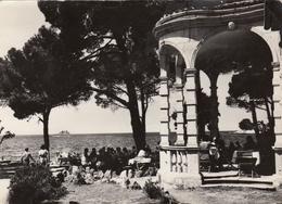 Rovigno Rovinj Istria 1958 - Croacia