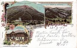 MARIASCHUTZ - Ort Mit Sonnwendstein, Gasthof Zum Auerhahn Andr. Prasch, , Lithokarte Schwidernoch Wien, Karte Nr 1575, - Neunkirchen