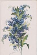 Cartoline Fiori- - Flowers