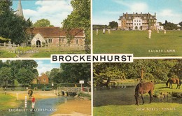CP - Brockenhurst  - Non Ecrite - - Autres