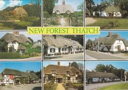 CP -  NEW FOREST THATCH - Non Ecrite - - Autres
