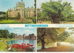 CP -  Nottinghamshire  - Non Ecrite - - Angleterre