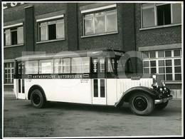 RARE C 1930 ORIGINAL FACTORY FOTO PHOTO BILD WILLEMS ANTWERPSCHE ANTWERP AUTOBUSSEN BUS AUTOBUS OMNIBUS BELGIQUE BELGIUM - Automobili