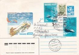 THEME A IDENTIFIER. ENVELOPPE ENTIER CIRCULEE YEAR 1988 RUSSIA TO ARGENTINE - BLEUP - 1980-91