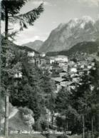 LOZZO DI CADORE  BELLUNO  Panorama Con Monte Tudaio  Dolomiti - Belluno