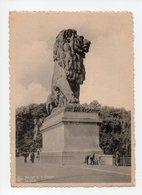 Belgique: Liege, Barrage De Gileppe, Le Lion (19-295) - Gileppe (Barrage)