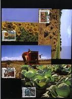 Bophuthatswana 1988 Plants - Vegetables Maximumcards - Vegetables