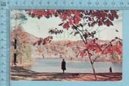 Mazinola Lakes Ontario -Autumn On Manizola  + 1983 Timbre CND -post Card Carte Postale - Non Classés