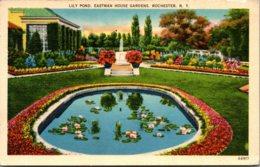 New York Rochester Lily Pond Eastman House Gardens 1941 Curteich - Rochester