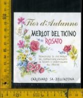 Etichetta Vino Liquore Rosato Merlot Del Ticino Carlevaro Sa - Bellinzona - Etichette