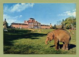 """CHATEAU-SUR-ALLIER  (03) : """" LE CHATEAU SAINT-AUGUSTIN - L'ELEPHANT """" - France"""