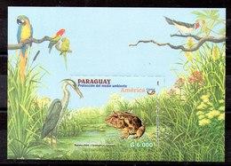 Hoja Bloque De Paraguay N ºYvert 23 ** PAJAROS (BIRDS) - Paraguay