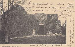 SALM-CHÂTEAU (25), Grand-Halleux, Trois-Ponts... Ensemb - Belgio