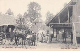ZWIJNDRECHT. 10 Cartes Postales, Dont «Brouwerij Van Bo - Belgio