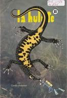 LA HULOTTE DES ARDENNES N° 89 / LE TRITON - Animaux