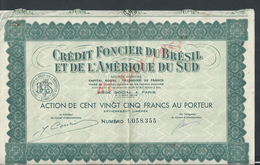 ACTION CRÉDIT FONCIER DU BRÉSIL & DE L AMÉRIQUE DU SUD : - Banque & Assurance