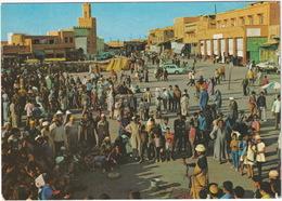 Marrakech - Place Djemaa El Fna, Charmeurs De Serpents - ( Cobra - Snake-charmer ) - (Maroc) - Marrakech