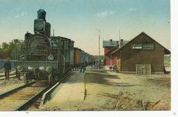 Valka Dzelzsceju Piestatne  Edit Letas  Train Close Up - Lettonie