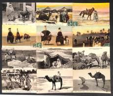 North Africa Types Ethnic Lot De 29 Postcards - Cartes Postales