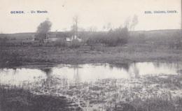 Genck Un Marais - Genk